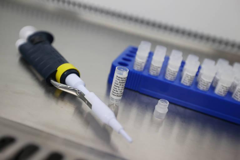O vírus, a vacina e a volta